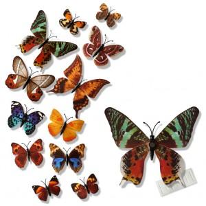 Motylki 3D /12 szt. kolorowe