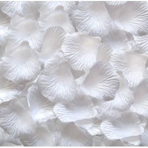 Płatki róż 100 szt. / białe