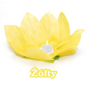 Lampion pływający / żółty kwiat lotosu