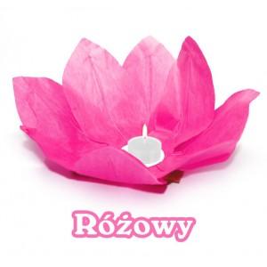 Lampion pływający / różowy kwiat lotosu